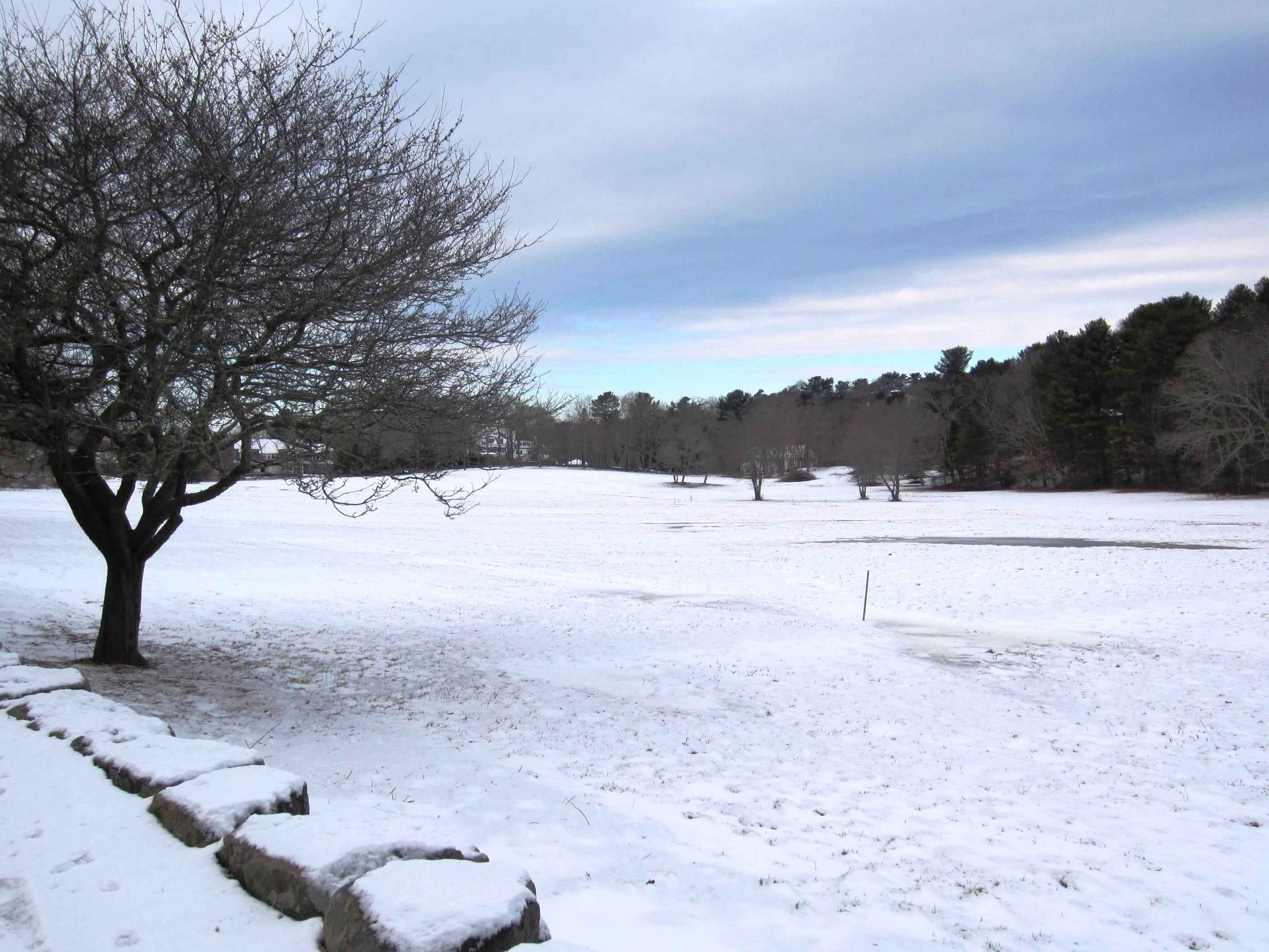 Open space with snow