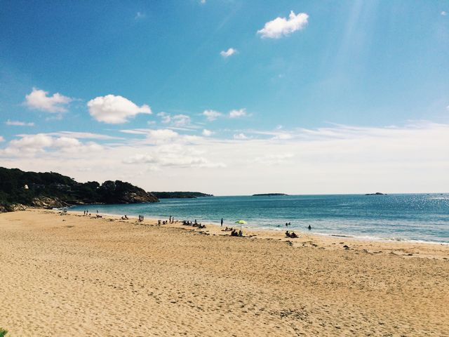 Image result for manchester by the sea singing beach
